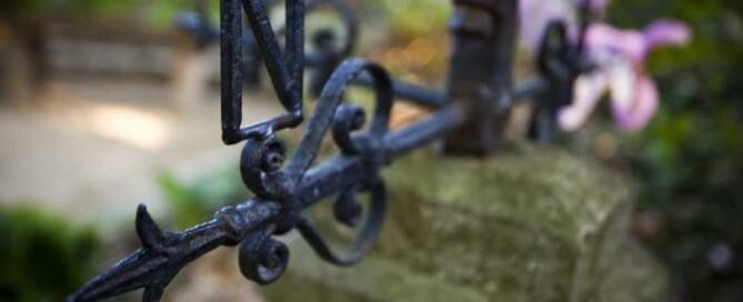 The importance of Aspect when designing your garden – Essex Garden Designs