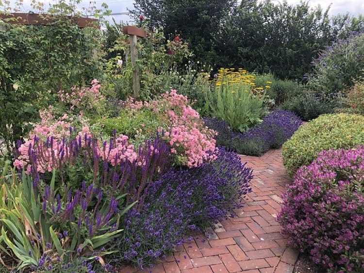 Essex Garden Designs – Border Design
