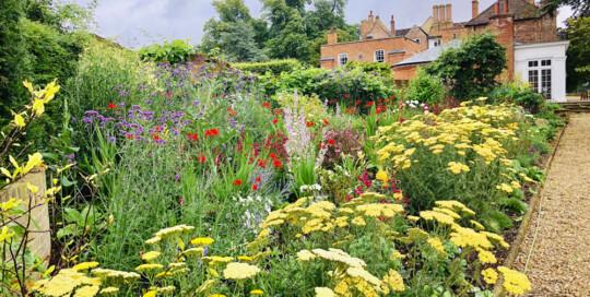 Border Design – Essex Garden Designs