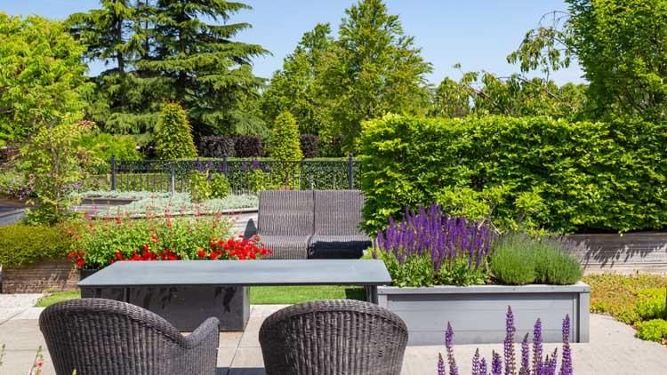 Garden Gallery - Essex Gardens Designs