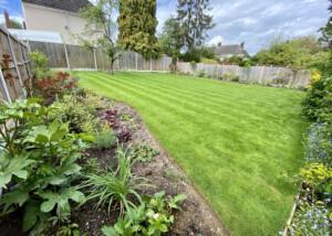 Old Allotment – Essex Garden Designs